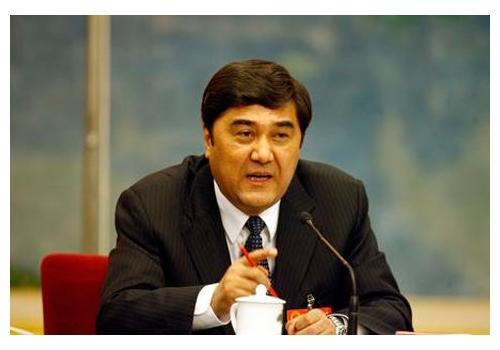 官方媒体确认努尔-白克力任国家能源局局长
