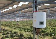 金寨:光伏跟踪系统与锦浪智能逆变器相得益彰 提升发电效率