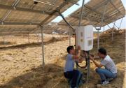 龙游40MW农光互补项目并网-全部采用锦浪智能逆变器