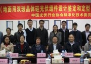 中国光伏行业协会标准《地面用双玻晶体硅光伏组件设计鉴定和定型》标准技术预审会顺利召开