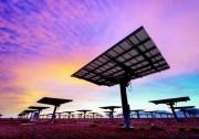 沙特300MW光伏电站竞标:0.0178美元/千瓦时最低报价出局
