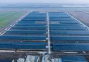 """年发电量1500万千瓦时 浙东最大""""牧光互补""""牛棚发电站项目投入使用!"""