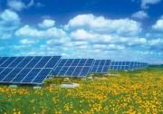 阿拉伯国家探讨构建能源互联网 优先开发大型太阳能基地