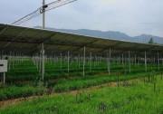 商洛市3MW农光互补项目成示范,首航逆变器稳定助力,业主收益有保障