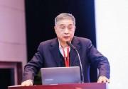 王勃华:2018年中国光伏新增装机超过43GW,同比下降18%