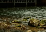 水污染治理市场狂欢背后:环保企业如何活出新高度?