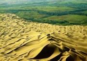 沙漠里面能种水稻?光伏治沙让荒漠变良田