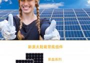 新源太阳能:中德合资智能无热斑组件