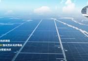 渔光标杆 | 华东最大平价光伏项目
