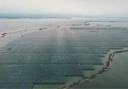 """看国家电投江西106MW""""水陆两栖""""光伏电站如何在进洪蓄水中""""乘风破浪"""""""