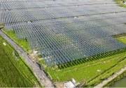 """""""光伏+储能""""将成为未来全球最主要能源来源"""